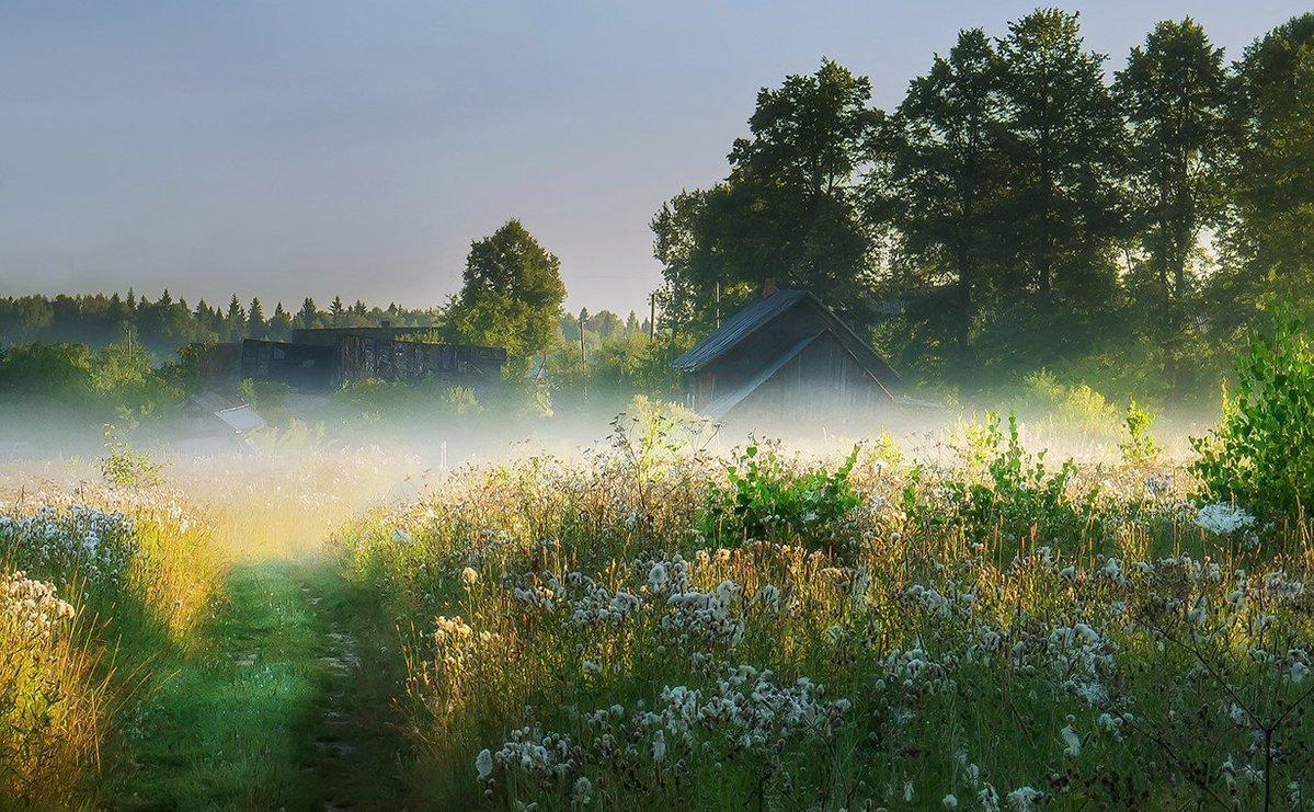фото доброе утро рассвет в деревне